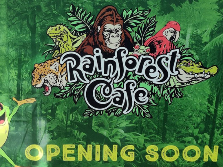 Rainforest Cafe Restaurant – Opening Soon in Dubai